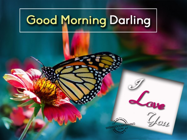 Good Morning Darling Pics : Good morning wishes for girlfriend pictures