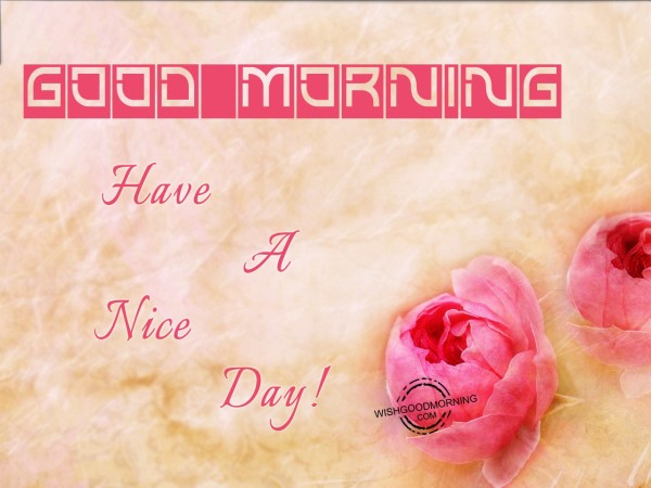 Good Morning And Have A Nice Day - Good Morning Pictures – WishGoodMorning.com