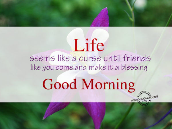 Life seems like curse,Good Morning