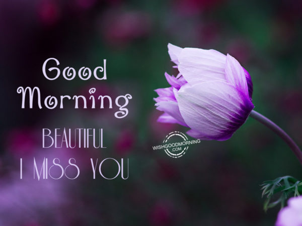 Good Morning – Beautiful I Miss You