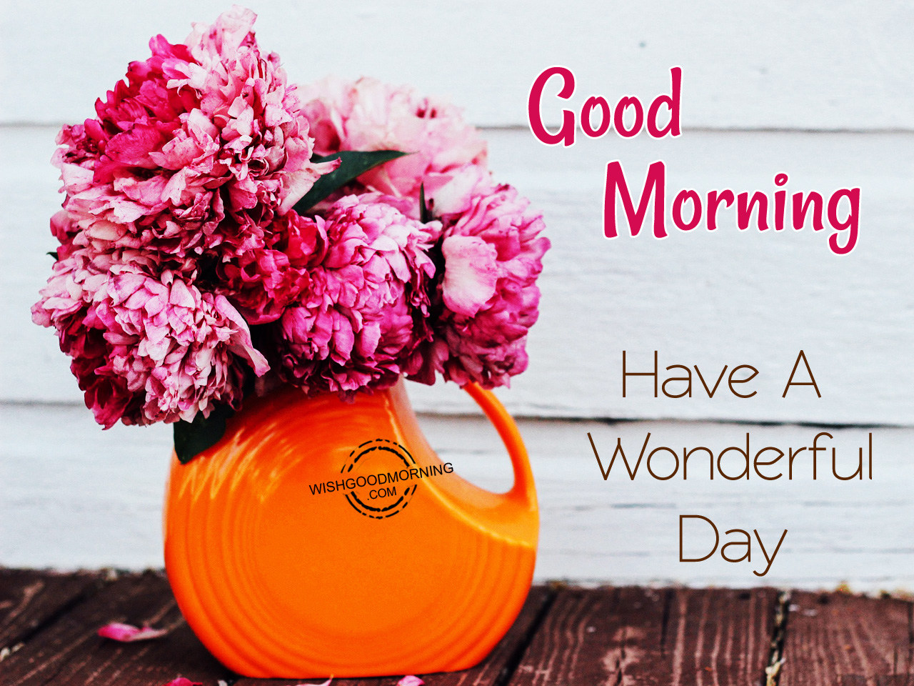 Good Morning Have A Great Day : Good morning wishes pictures