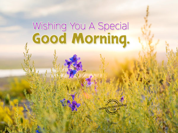 Wishing You A Special Good Morning