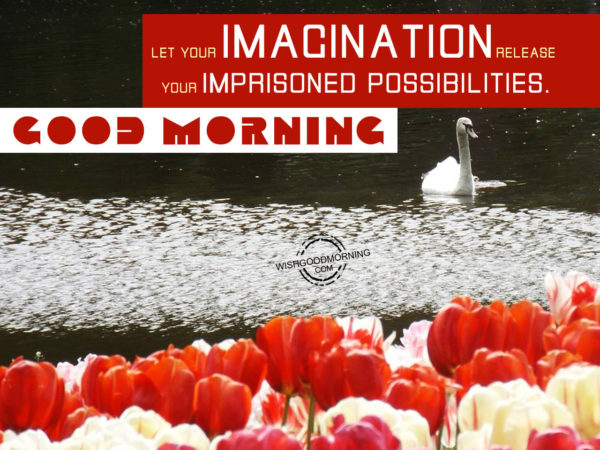 Let Your Imagination Release Your Imprisoned Possibilities