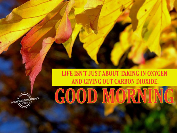 Life Is Not Just About Taking In Oxygen And Giving Out Carbon Dioxide.