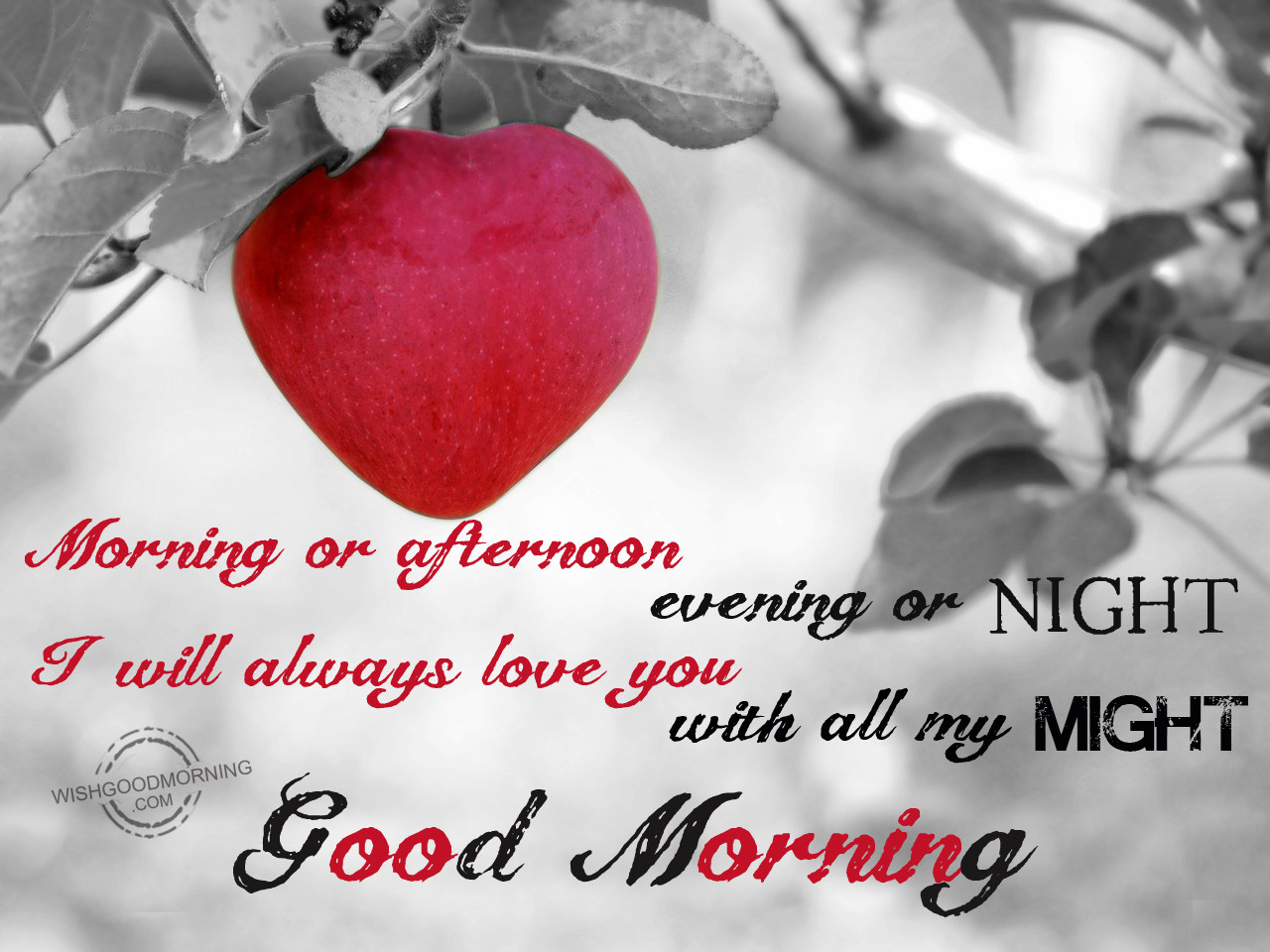 Good Morning Wishes For Wife Good Morning Pictures