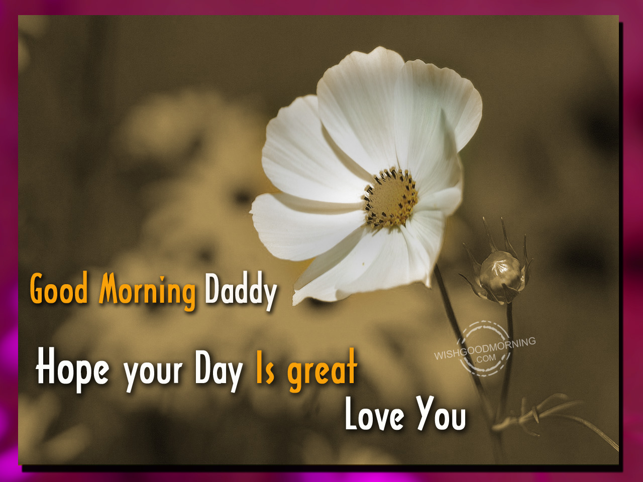 Good Morning Dad Hope Your Day Is Great Good Morning Pictures