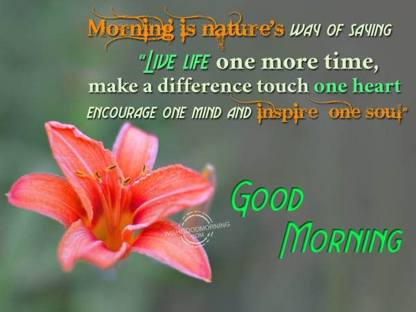 Morning Is Natures Way Of Saying Live Life Good Morning Pictures