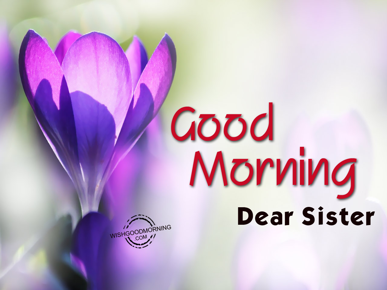 Good Morning Wishes For Sister