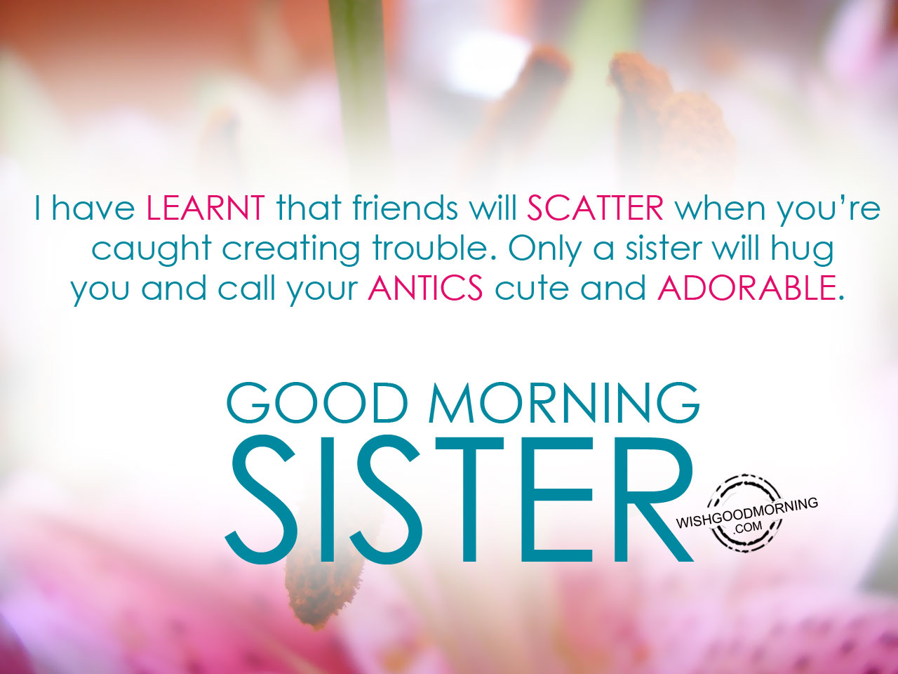 Good Morning Wishes For Sister Good Morning Pictures