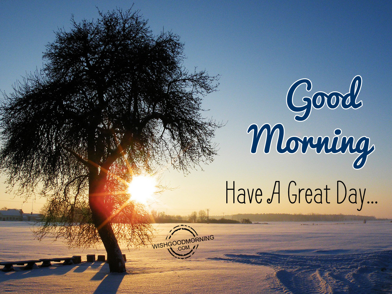 Good Morning Have A Great Day Good Morning Pictures