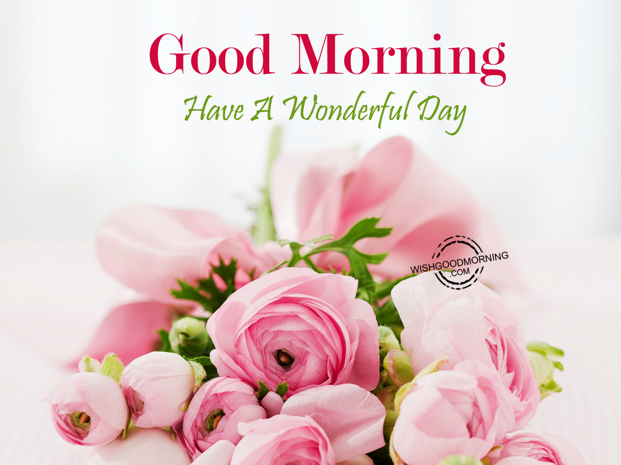 Have A Wonderful Day Good Morning Good Morning Pictures