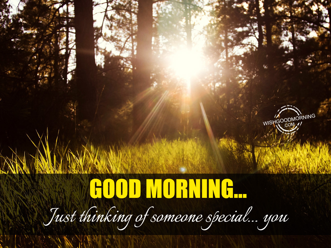 Good Morning Quotes For Someone Special: Good Morning Pictures