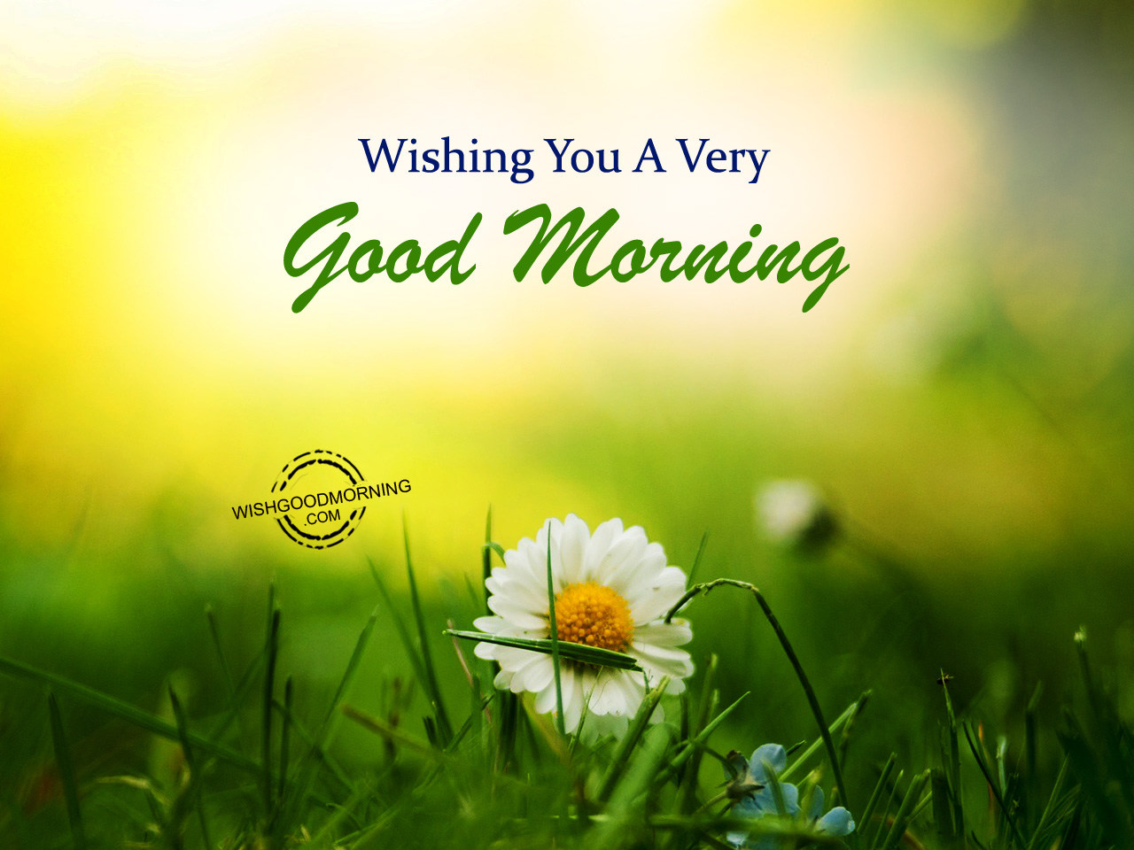 Wishing You A Very Good Morning