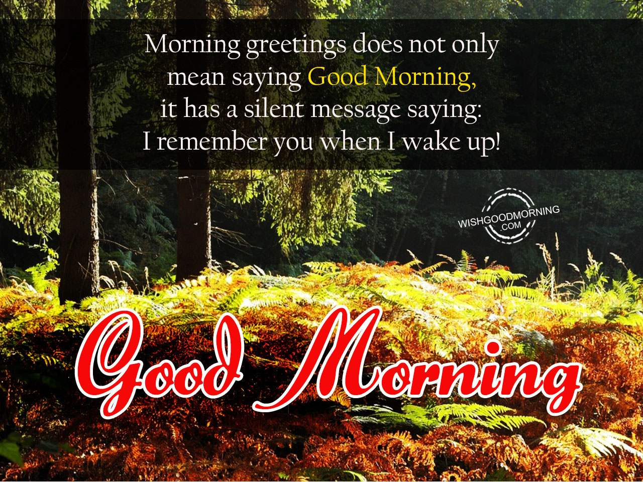 Good Morning Wishes - Good Morning Pictures