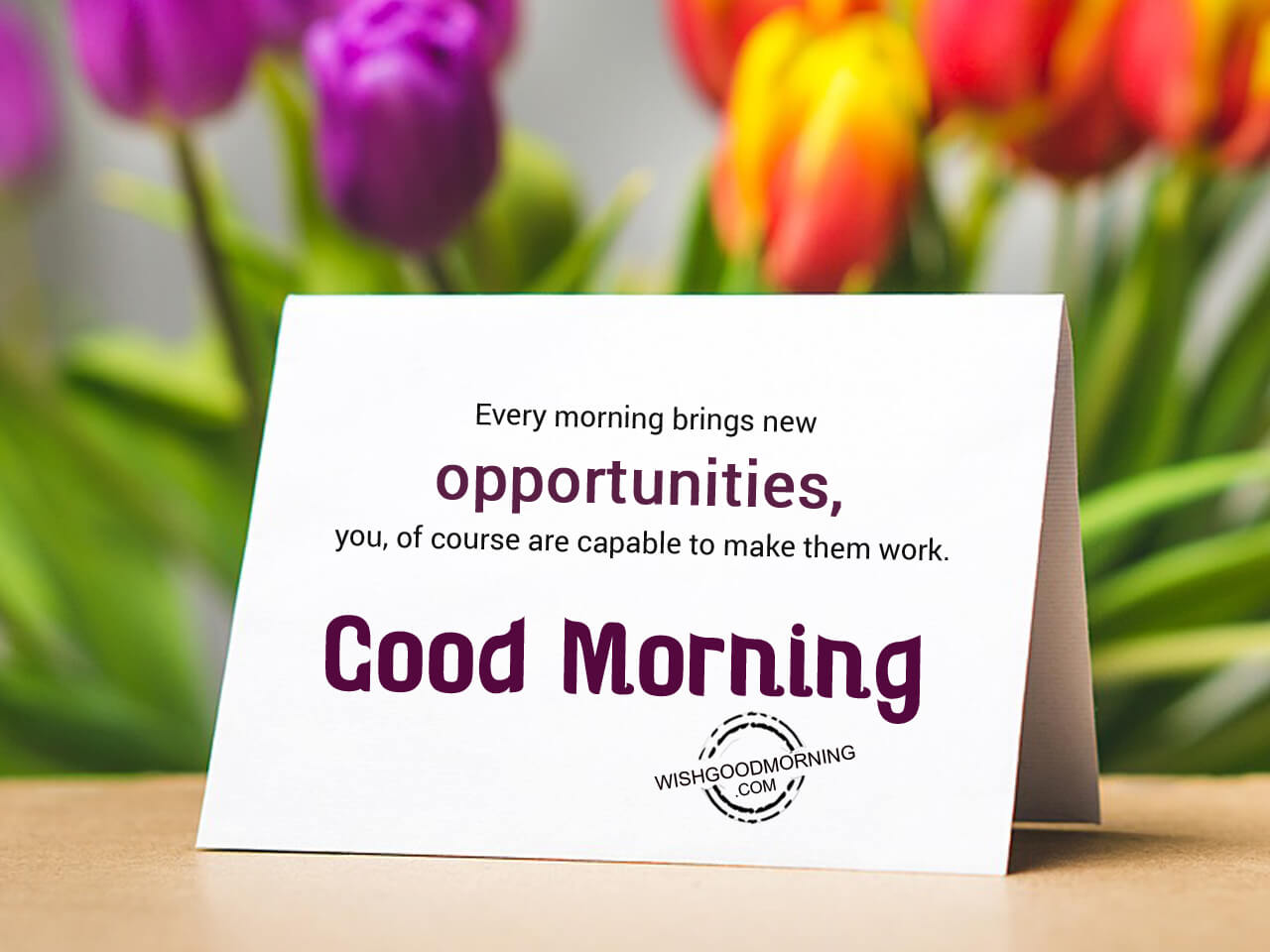 Every Morning Brings New Opportunities Good Morning Good Morning